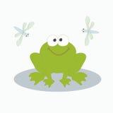 Groene kikker en libel Royalty-vrije Stock Afbeelding