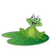 Groene kikkerzitting op groen blad Stock Foto