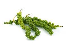 Groene kleurenzwarte peper Stock Foto's