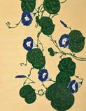 Groene klimplant Royalty-vrije Stock Foto's