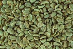 Groene koffiebonen Royalty-vrije Stock Foto's