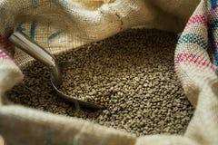 Groene koffiebonen Royalty-vrije Stock Afbeeldingen