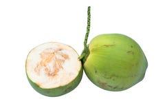 Groene kokosnoten royalty-vrije stock foto's