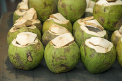 Groene Kokosnoten Stock Foto