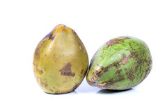 Groene Kokosnoten Stock Afbeeldingen