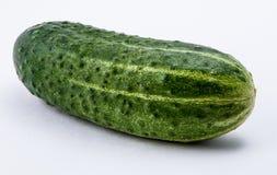 Groene komkommer op een witte achtergrond Royalty-vrije Stock Afbeelding
