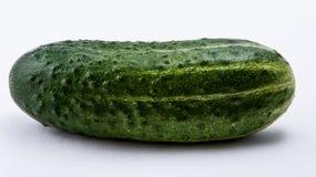 Groene komkommer op een witte achtergrond Royalty-vrije Stock Foto