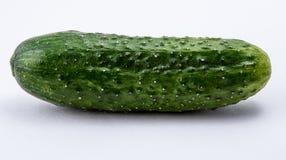 Groene komkommer op een witte achtergrond Stock Afbeeldingen
