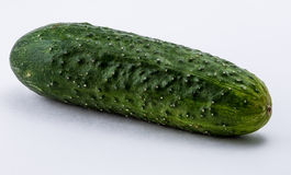 Groene komkommer op een witte achtergrond Royalty-vrije Stock Foto's