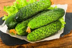 Groene komkommers Royalty-vrije Stock Foto's