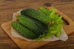 Groene komkommers Stock Fotografie