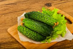 Groene komkommers Stock Foto's