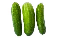 Groene komkommers Stock Afbeeldingen