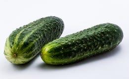 groene komkommers op een witte achtergrond Royalty-vrije Stock Afbeelding