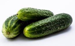 groene komkommers op een witte achtergrond Royalty-vrije Stock Foto's
