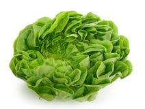 Groene kool stock foto's