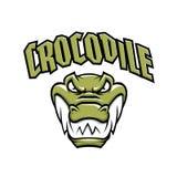 Groene krokodil hoofdmascotte Royalty-vrije Stock Fotografie