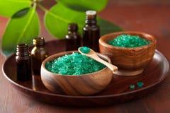 Groene kruidenzout en etherische oliën voor gezond kuuroordbad stock afbeeldingen