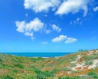 Groene kust stock foto's
