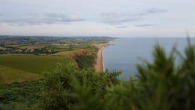 Groene kust Stock Foto