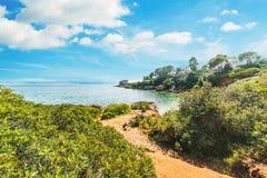Groene kust in Alghero stock afbeelding