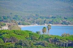 Groene kust in Capo Caccia royalty-vrije stock afbeelding