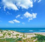 Groene kust en witte wolken stock foto's