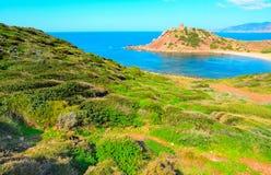 Groene kust in Porticciolo-strand stock fotografie