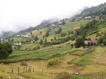 Groene landbouwgrond Royalty-vrije Stock Afbeelding
