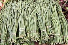 Groene lange bonen Stock Afbeeldingen