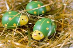 Groene lieveheersbeestjes Stock Foto's