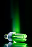 Groene lightbulb Royalty-vrije Stock Foto