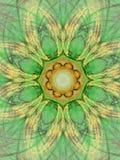 Groene mandala royalty-vrije illustratie