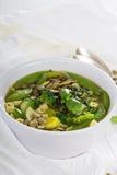 Groene minestrone met groenten Stock Fotografie