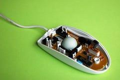 Groene Mousework stock afbeeldingen