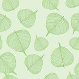 Groene naadloze bladeren, Royalty-vrije Stock Afbeelding