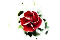 Groene natuer van de bloemkunst flowerart stock foto's