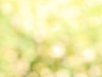 Groene natuurlijke bokehsamenvatting Stock Afbeeldingen