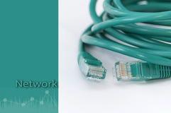 Groene netwerkkabel op witte groene heks als achtergrond Stock Foto's