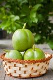Groene noten Stock Foto