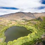 Groene oase in droge hooglanden van Centrale Otago, NZ stock foto's