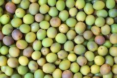 Groene olijfachtergrond Royalty-vrije Stock Afbeeldingen