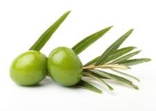 Groene olijven royalty-vrije stock fotografie