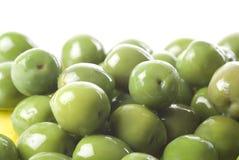 Groene Olijven Royalty-vrije Stock Afbeelding