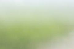 Groene onduidelijk beeld abstracte achtergrond Stock Afbeeldingen