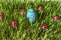 Groene ontsproten gerst met geschilderde blauwe ei en onzelieveheersbeestjes Royalty-vrije Stock Foto's