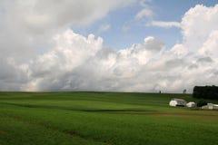 Groene Open Landbouwgrond stock afbeelding