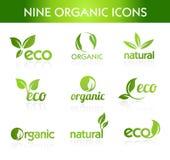 Groene Organische Pictogrammen vector illustratie