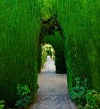 Groene overwelfde galerij, Alhambra paleis Royalty-vrije Stock Afbeelding