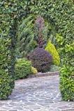 Groene overwelfde galerij in de tuin Stock Afbeelding